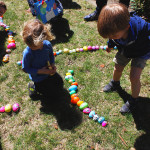 Egg Counting